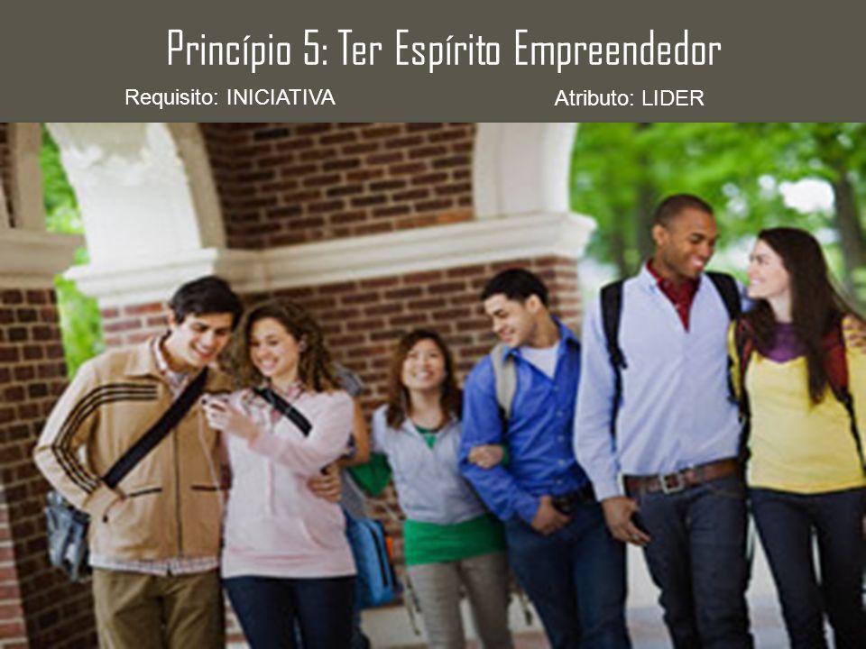 Princípio 5: Ter Espírito Empreendedor