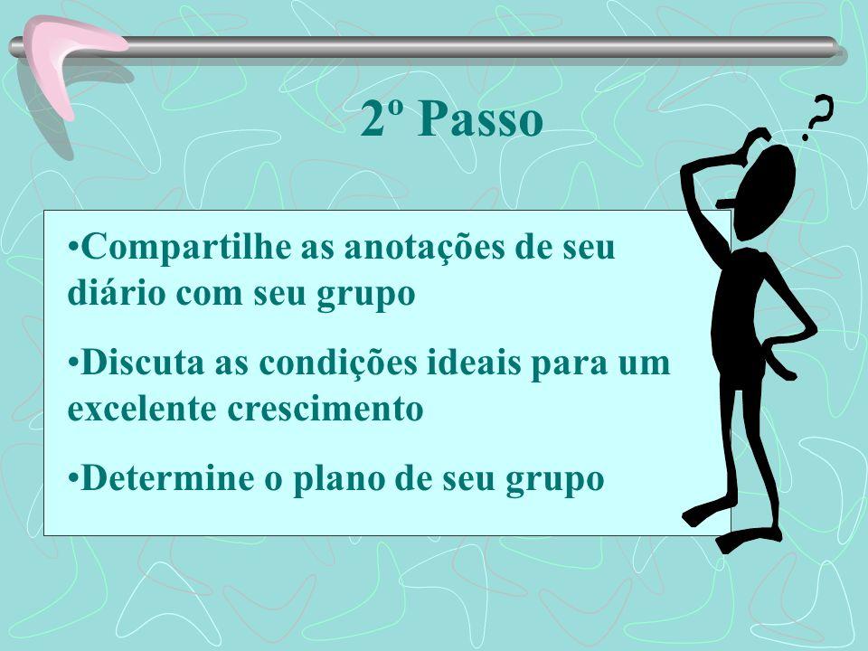 2º Passo Compartilhe as anotações de seu diário com seu grupo