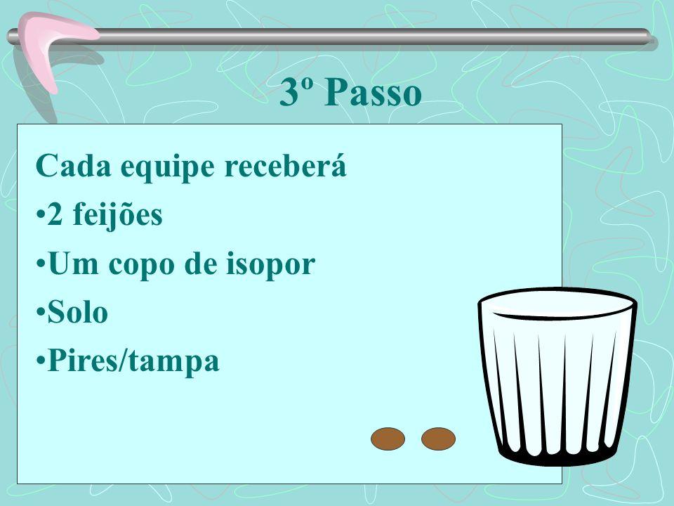 3º Passo Cada equipe receberá 2 feijões Um copo de isopor Solo