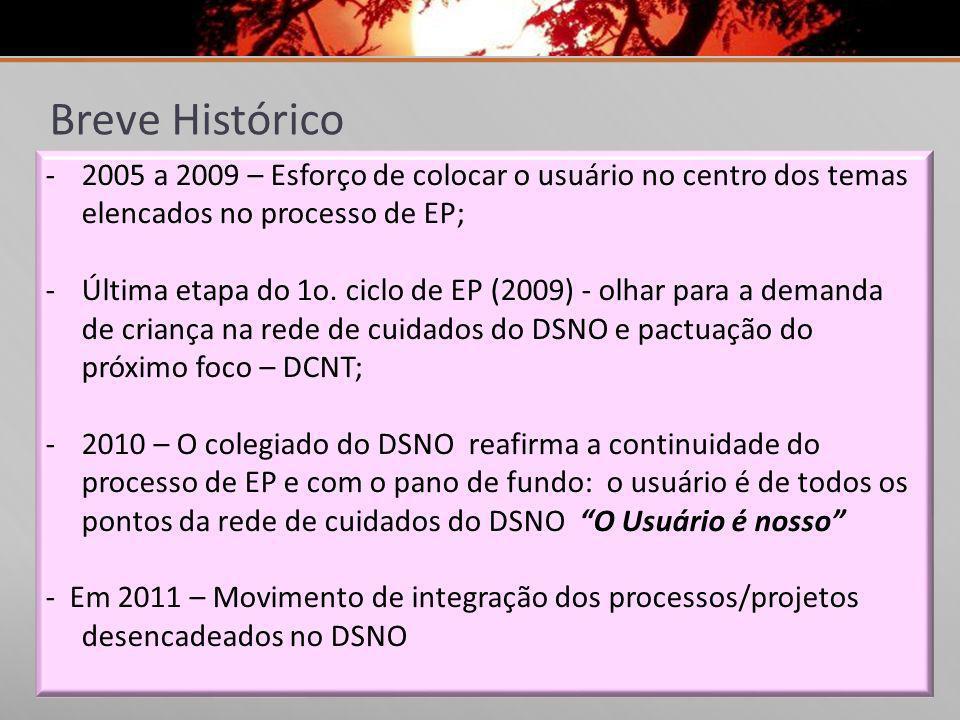 Breve Histórico 2005 a 2009 – Esforço de colocar o usuário no centro dos temas elencados no processo de EP;
