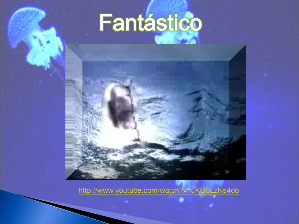 Fantástico http://www.youtube.com/watch v=JKGbLzNs4do
