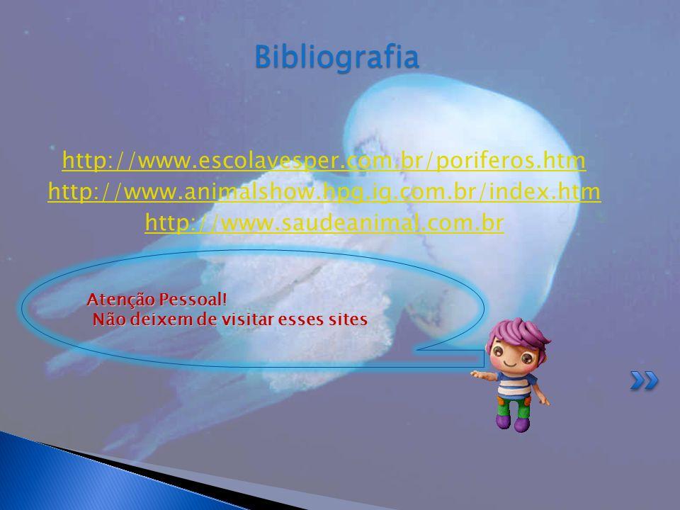Bibliografia http://www.escolavesper.com.br/poriferos.htm