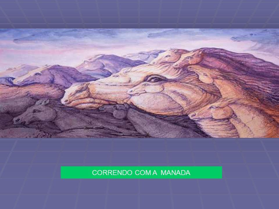 CORRENDO COM A MANADA
