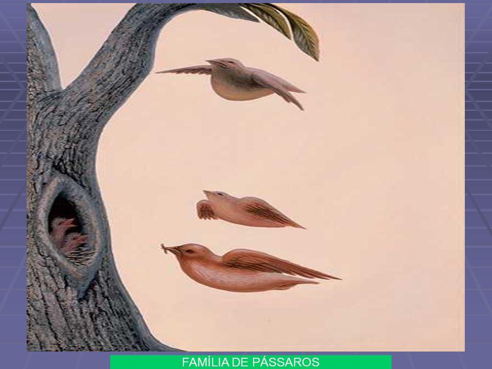 FAMÍLIA DE PÁSSAROS