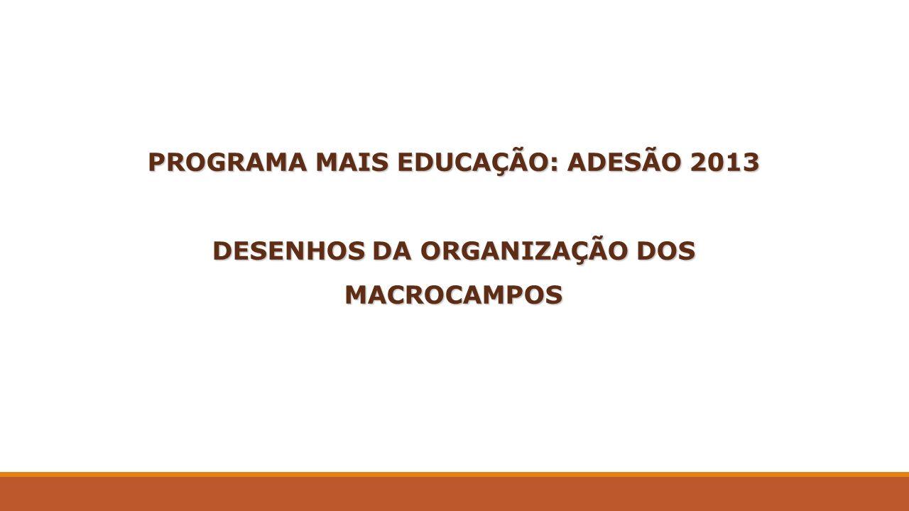 PROGRAMA MAIS EDUCAÇÃO: ADESÃO 2013