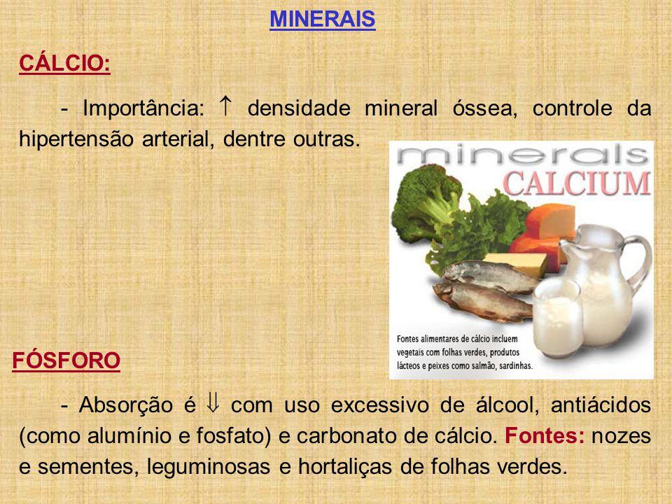 MINERAIS CÁLCIO: - Importância:  densidade mineral óssea, controle da hipertensão arterial, dentre outras.