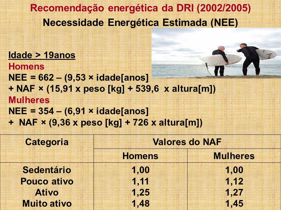 Recomendação energética da DRI (2002/2005)