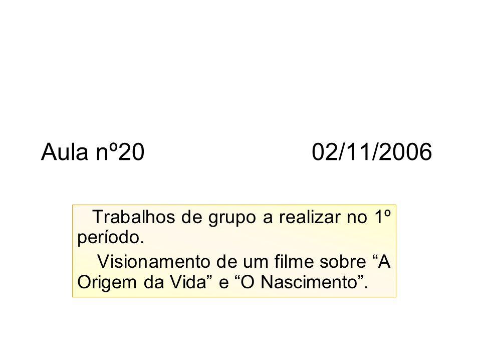 Aula nº20 02/11/2006 Trabalhos de grupo a realizar no 1º período.