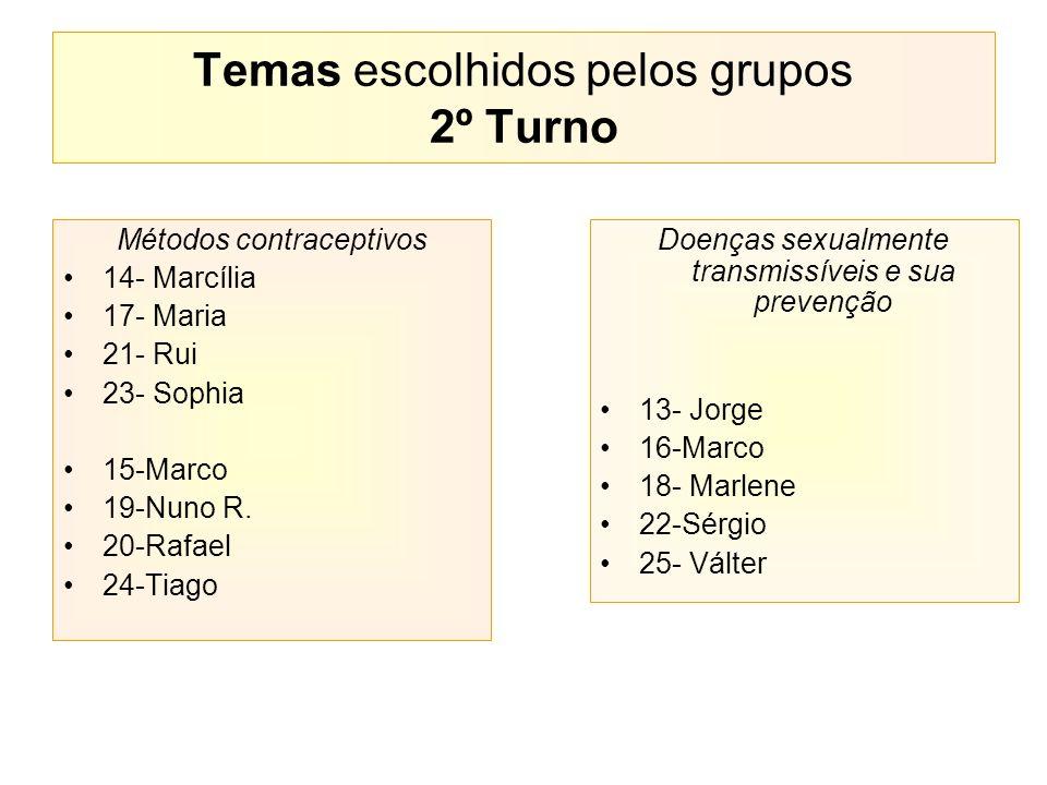 Temas escolhidos pelos grupos 2º Turno