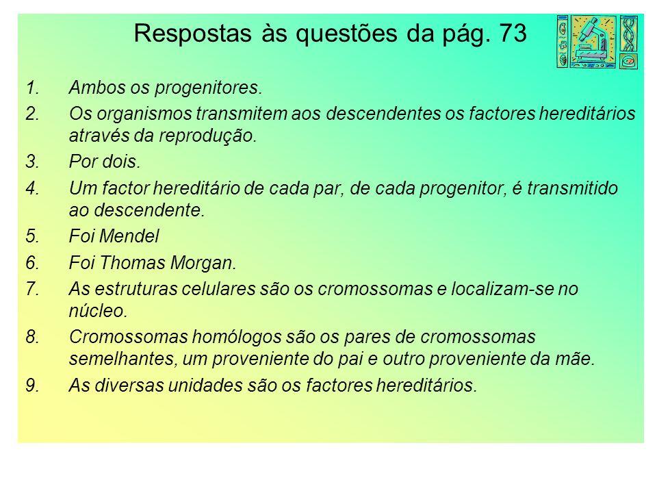 Respostas às questões da pág. 73
