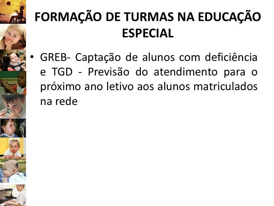 FORMAÇÃO DE TURMAS NA EDUCAÇÃO ESPECIAL