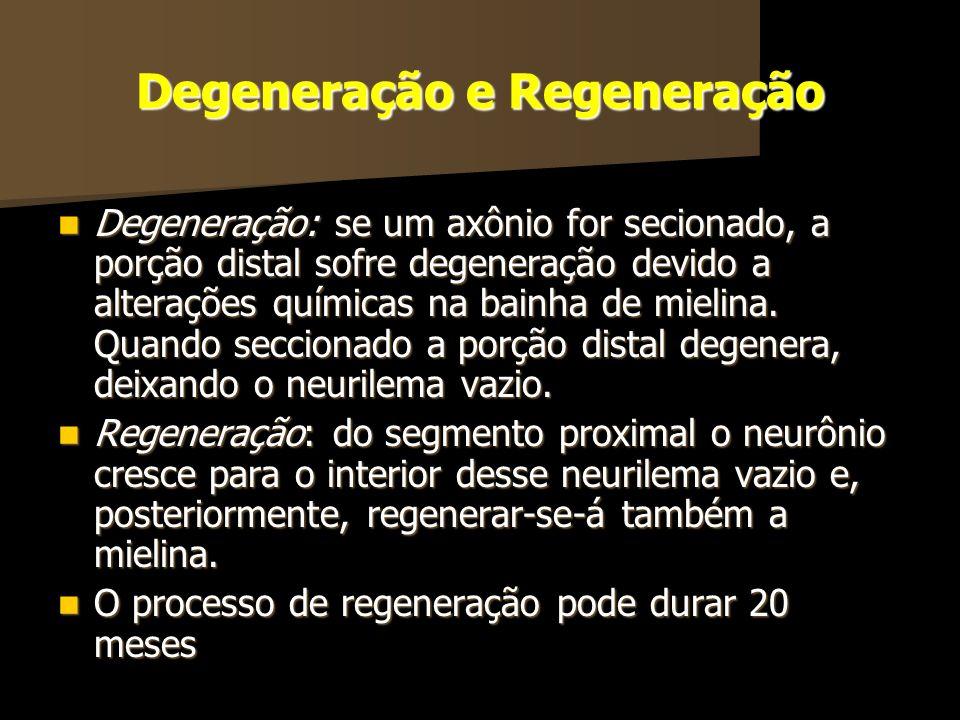 Degeneração e Regeneração