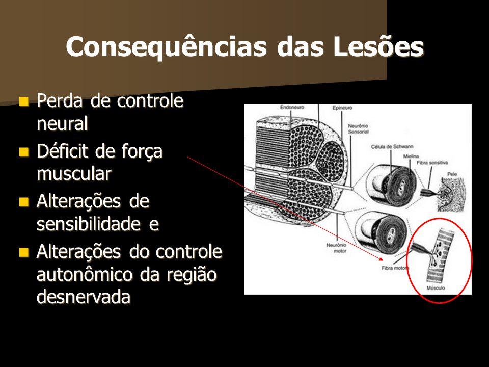 Consequências das Lesões
