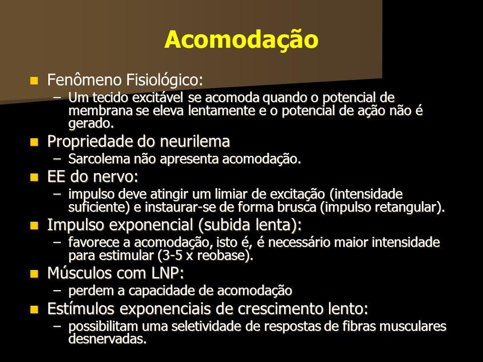 Acomodação Fenômeno Fisiológico: Propriedade do neurilema EE do nervo: