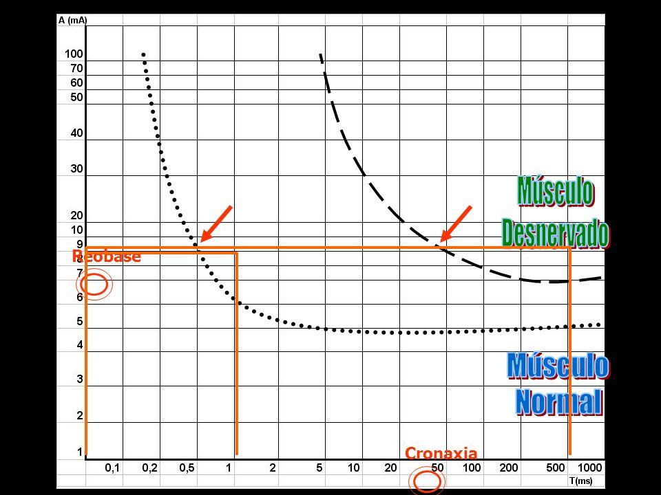 Músculo Desnervado Reobase Músculo Normal Cronaxia