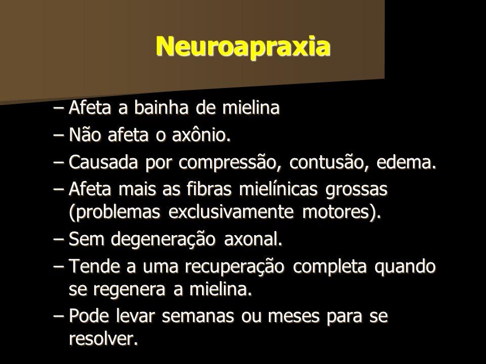 Neuroapraxia Afeta a bainha de mielina Não afeta o axônio.