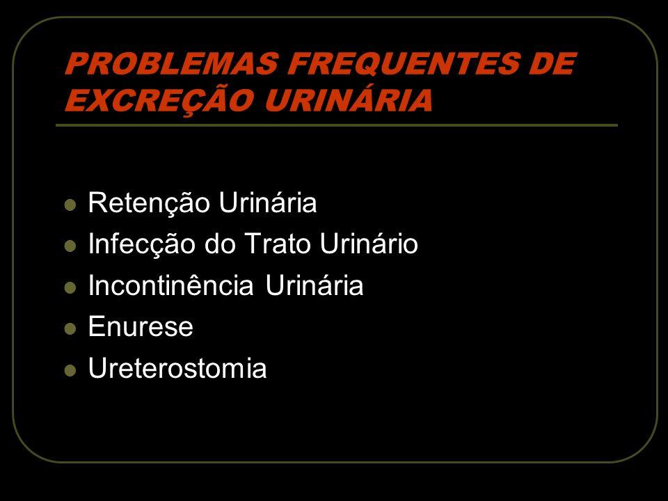 PROBLEMAS FREQUENTES DE EXCREÇÃO URINÁRIA
