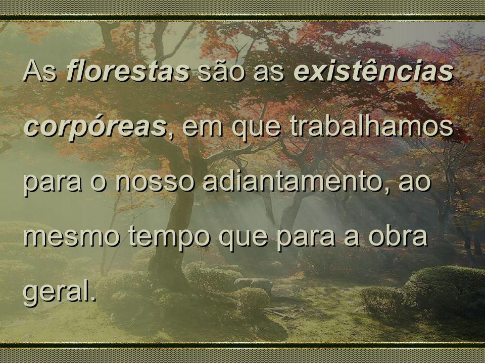 As florestas são as existências corpóreas, em que trabalhamos para o nosso adiantamento, ao mesmo tempo que para a obra geral.