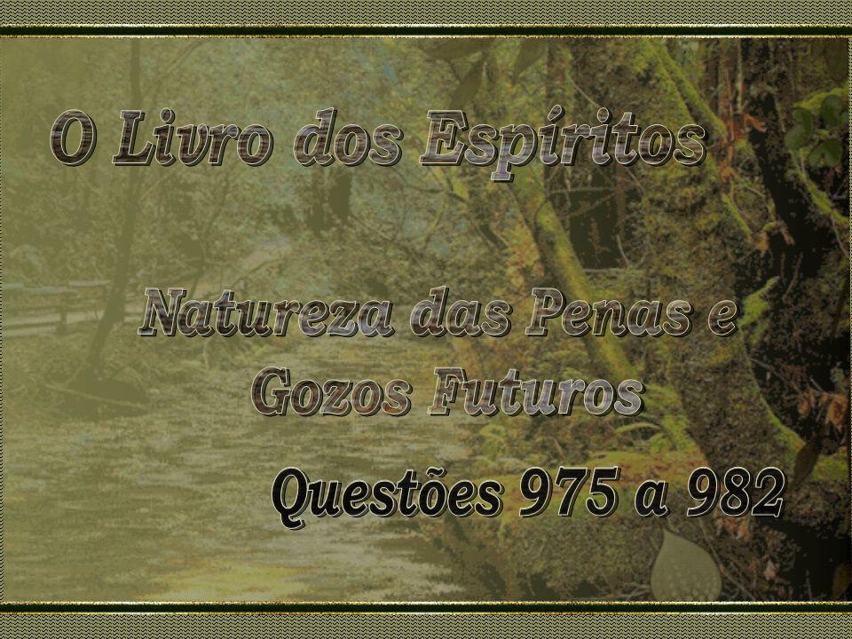 O Livro dos Espíritos Natureza das Penas e Gozos Futuros