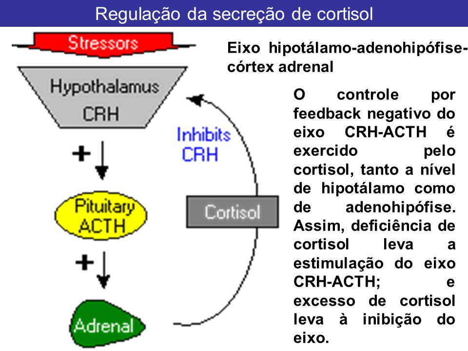 Regulação da secreção de cortisol