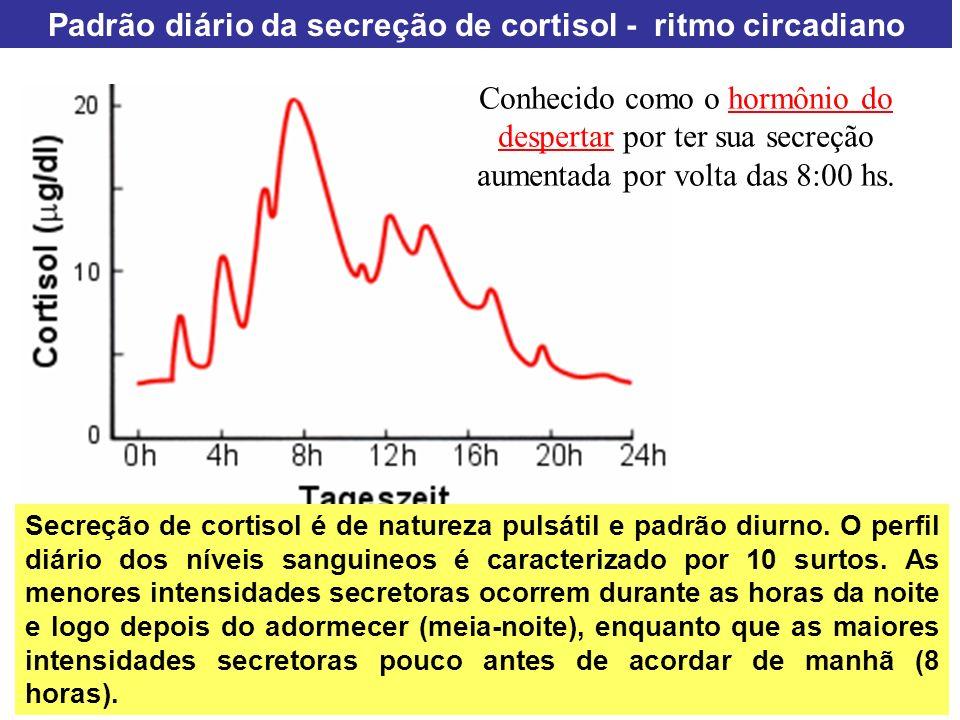 Padrão diário da secreção de cortisol - ritmo circadiano