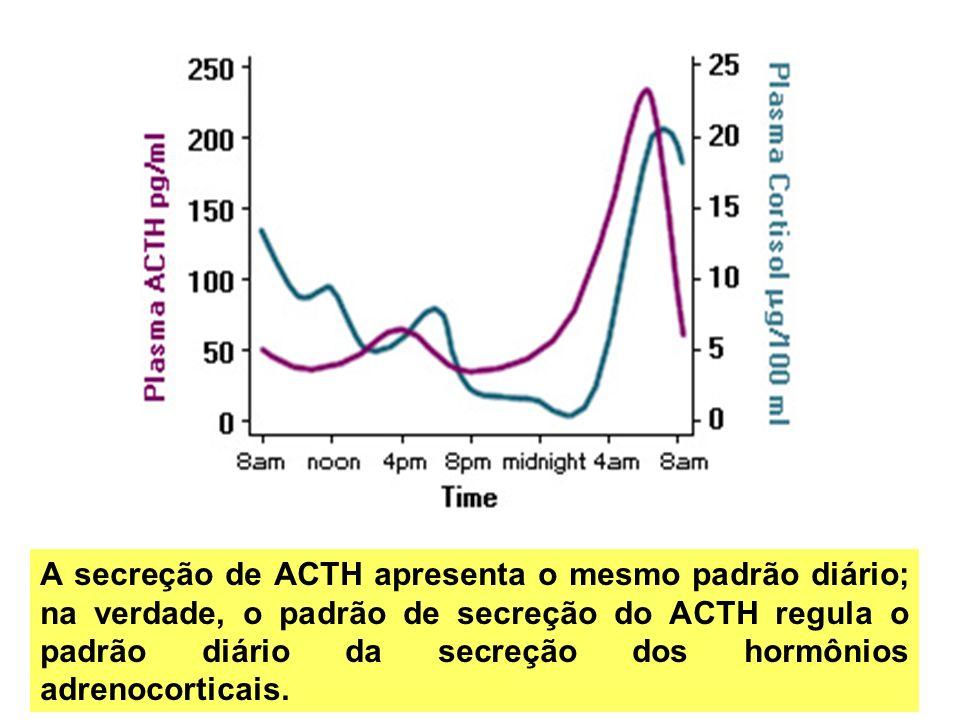 A secreção de ACTH apresenta o mesmo padrão diário; na verdade, o padrão de secreção do ACTH regula o padrão diário da secreção dos hormônios adrenocorticais.
