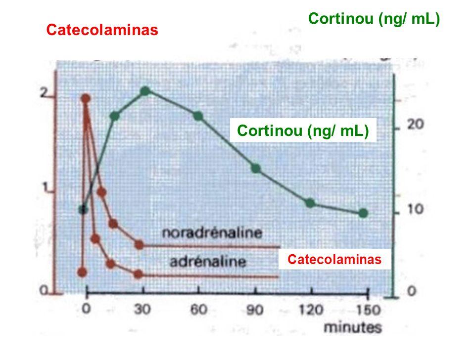 Cortinou (ng/ mL) Catecolaminas Cortinou (ng/ mL)
