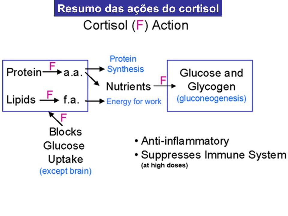 Resumo das ações do cortisol