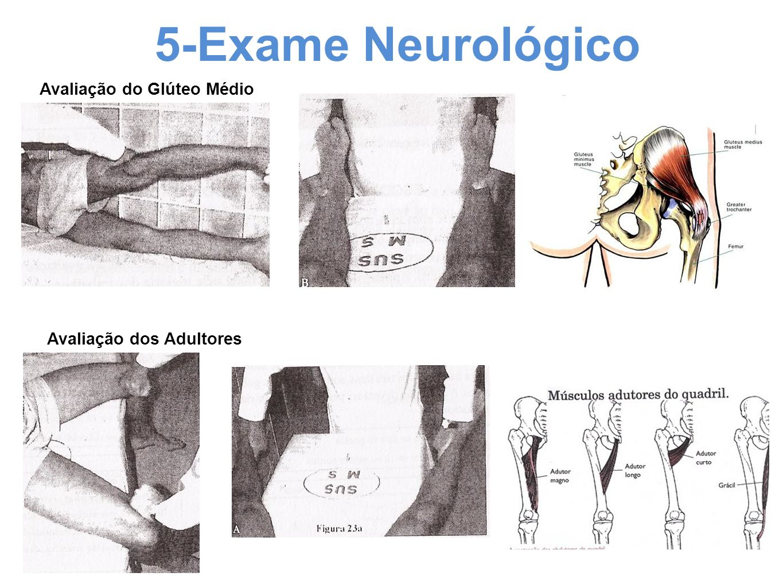 5-Exame Neurológico Avaliação do Glúteo Médio Avaliação dos Adultores
