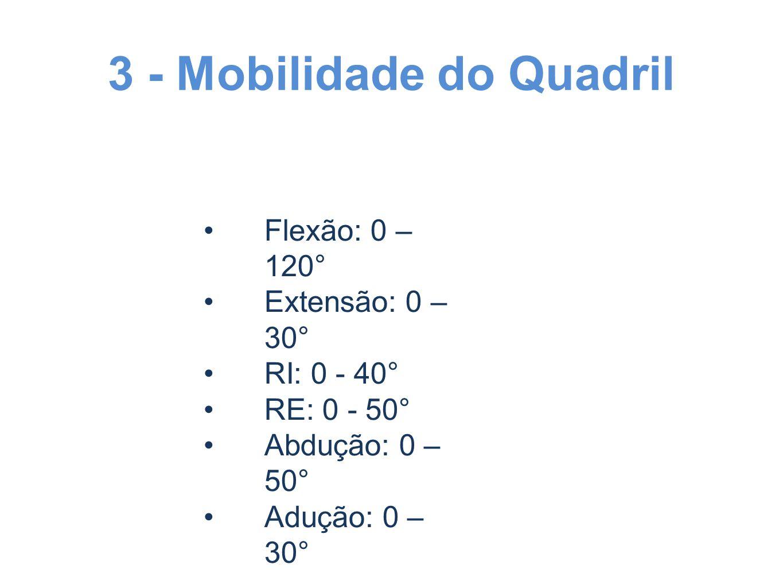 3 - Mobilidade do Quadril