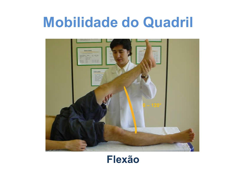 Mobilidade do Quadril 0 – 120° Flexão