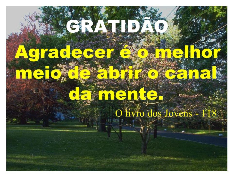 Agradecer é o melhor meio de abrir o canal da mente.
