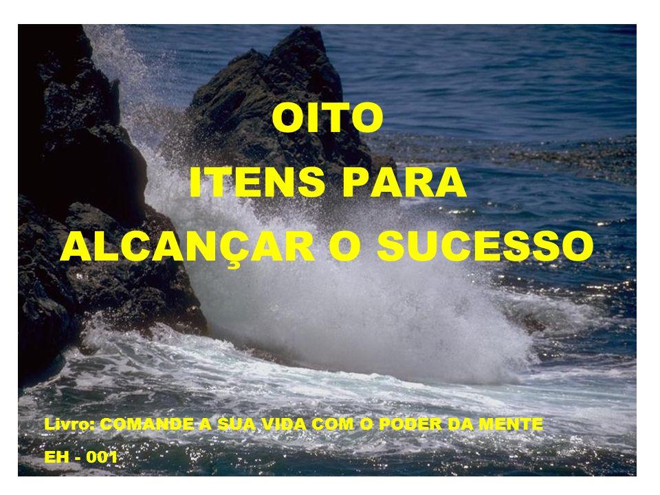 OITO ITENS PARA ALCANÇAR O SUCESSO