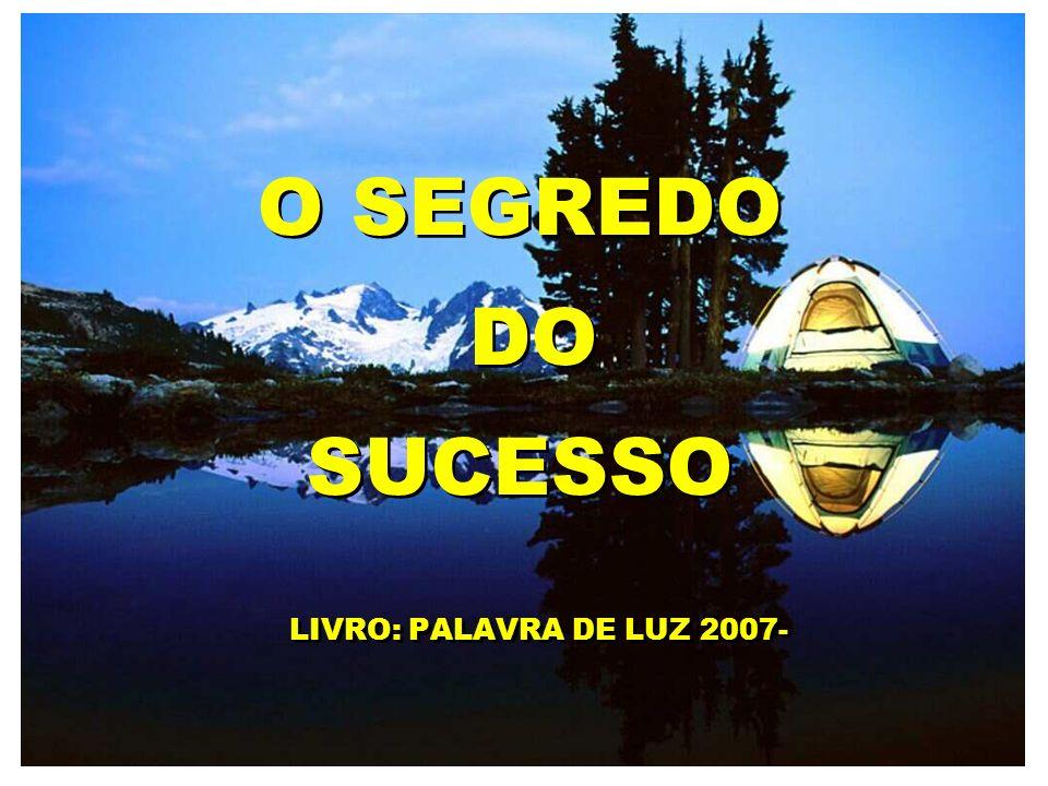 O SEGREDO DO SUCESSO LIVRO: PALAVRA DE LUZ 2007-