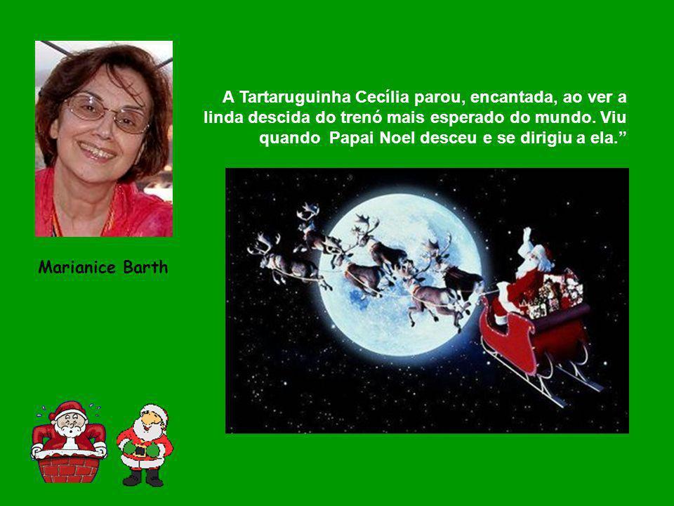 A Tartaruguinha Cecília parou, encantada, ao ver a linda descida do trenó mais esperado do mundo. Viu quando Papai Noel desceu e se dirigiu a ela.