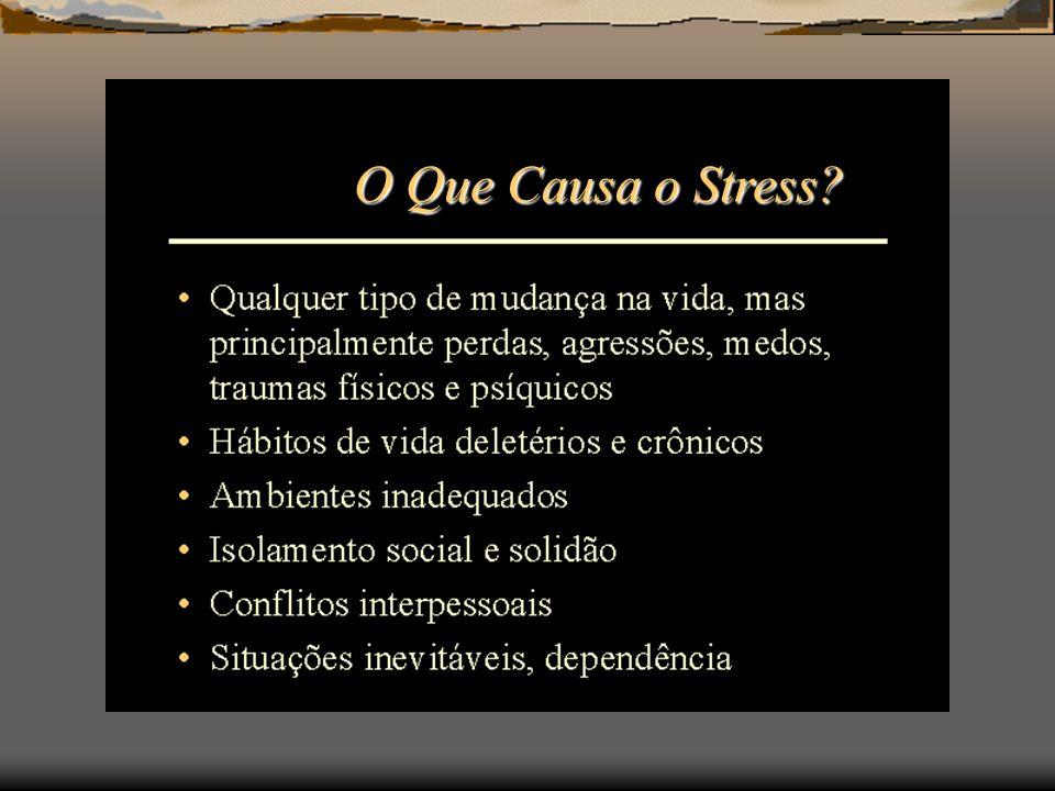 O Que Causa o Stress