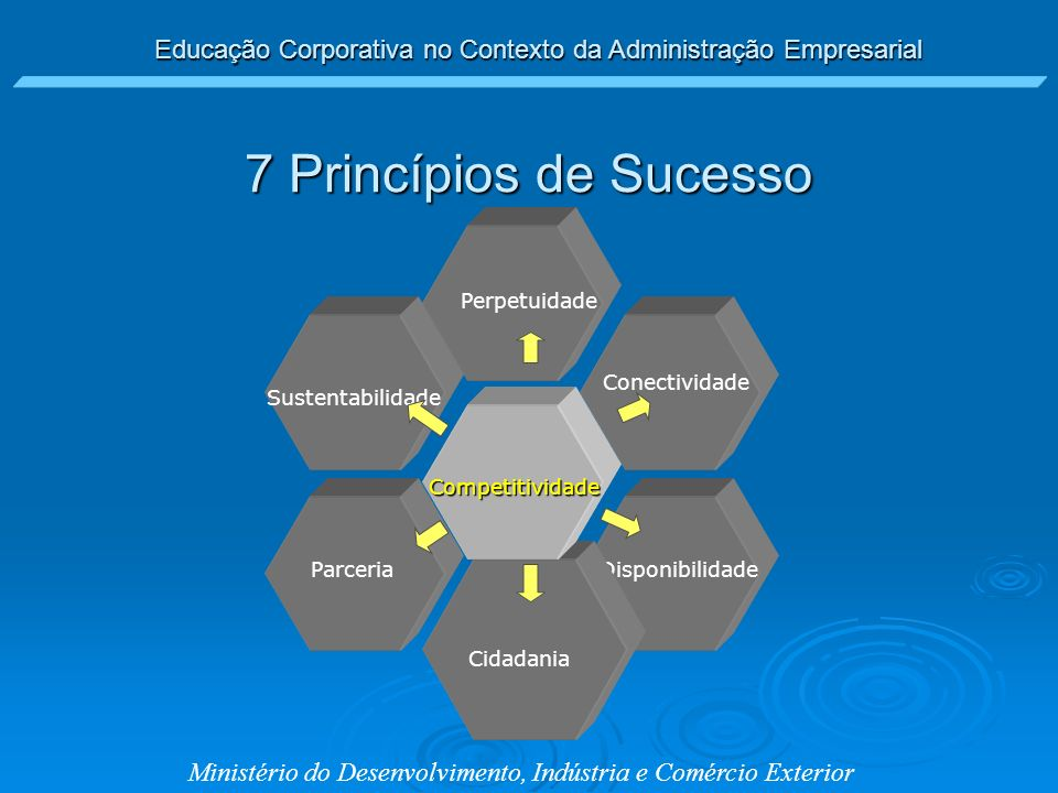 7 Princípios de Sucesso Perpetuidade Conectividade Sustentabilidade