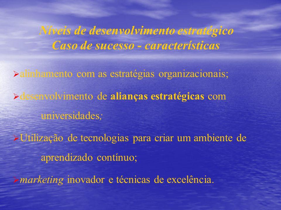 Níveis de desenvolvimento estratégico Caso de sucesso - características