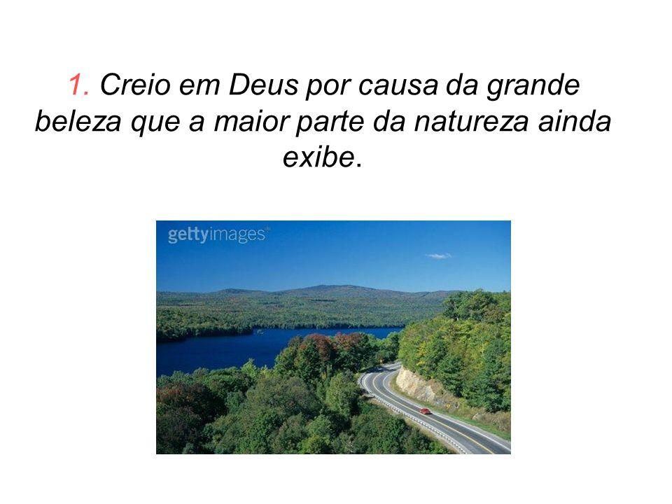 1. Creio em Deus por causa da grande beleza que a maior parte da natureza ainda exibe.