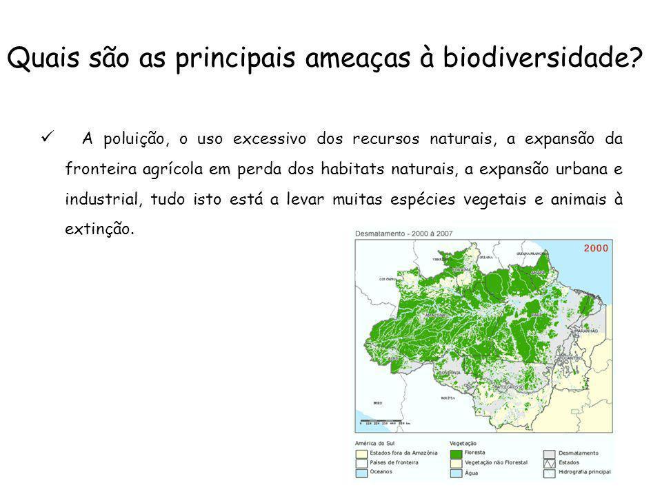 Quais são as principais ameaças à biodiversidade