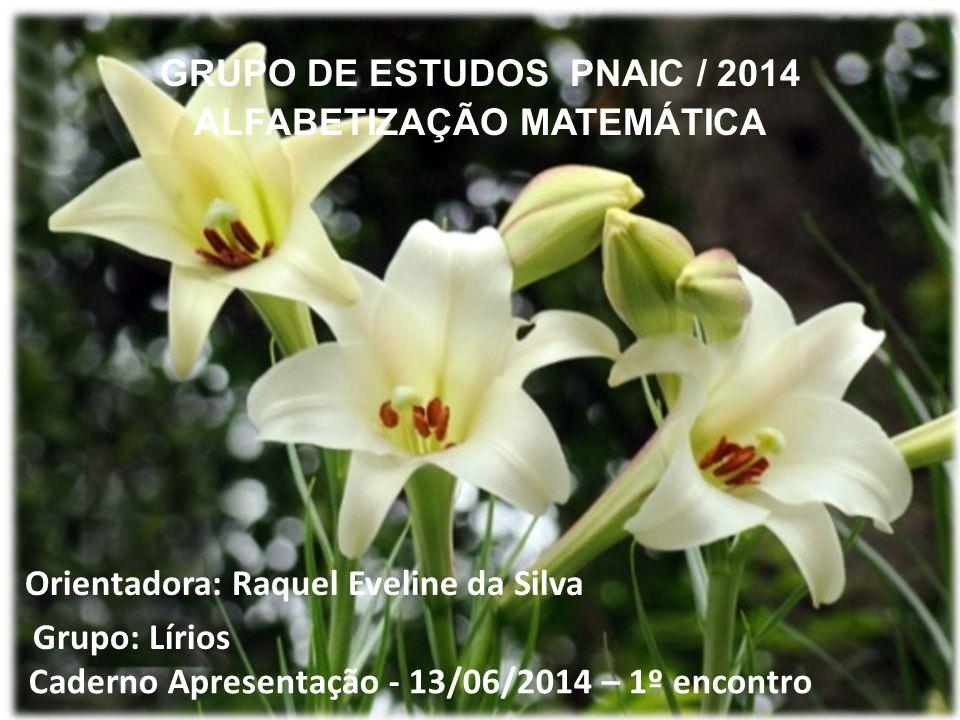 GRUPO DE ESTUDOS PNAIC / 2014 ALFABETIZAÇÃO MATEMÁTICA