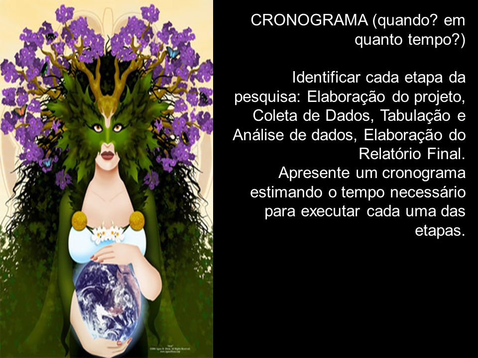 CRONOGRAMA (quando em quanto tempo )