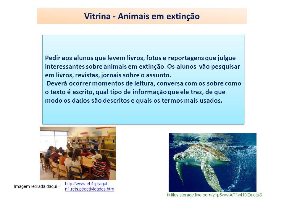 Vitrina - Animais em extinção