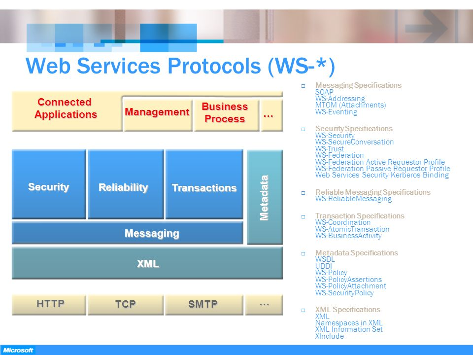 Web Services Protocols (WS-*)