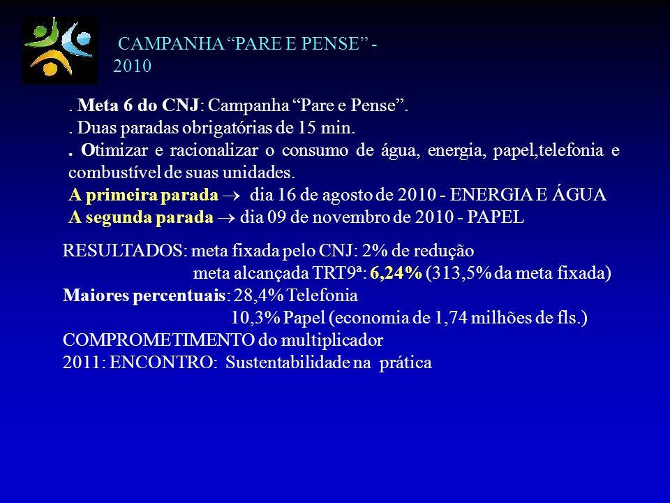 CAMPANHA PARE E PENSE - 2010