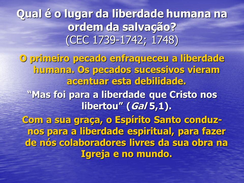 Mas foi para a liberdade que Cristo nos libertou (Gal 5,1).