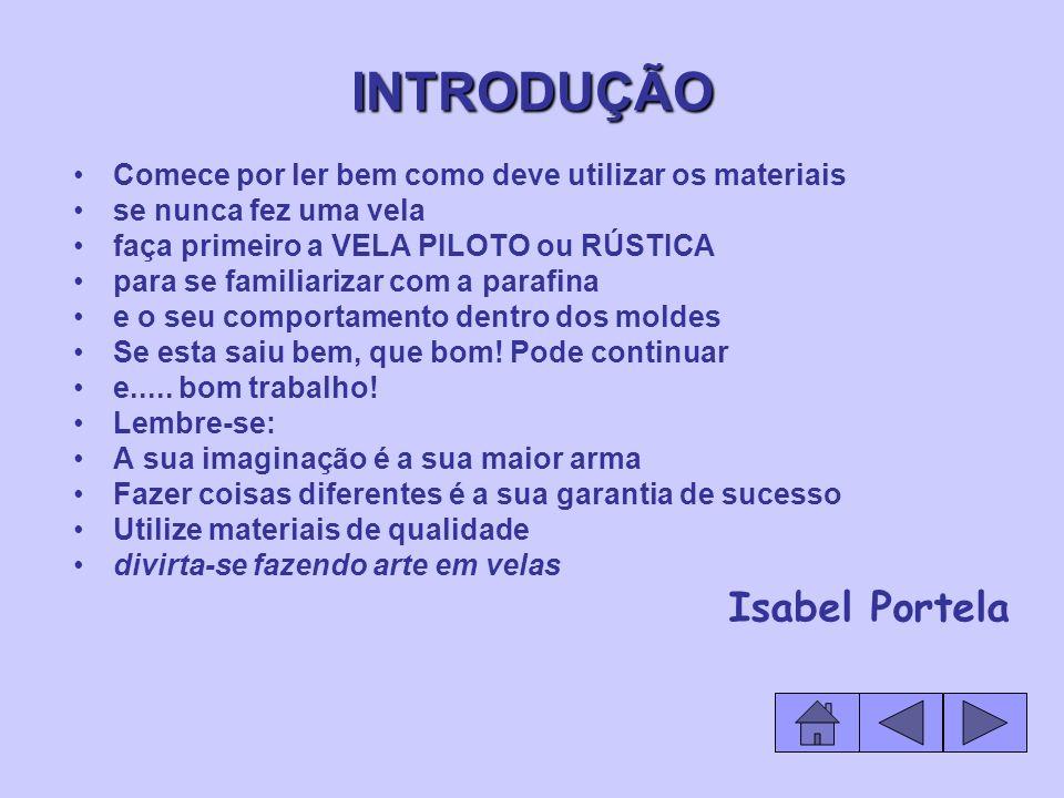 INTRODUÇÃO Isabel Portela