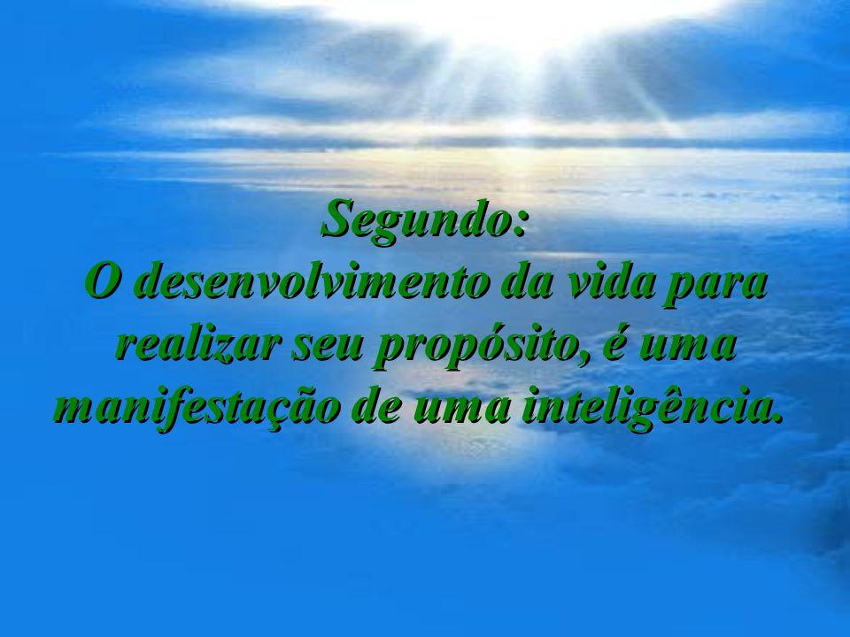 Segundo: O desenvolvimento da vida para realizar seu propósito, é uma manifestação de uma inteligência.