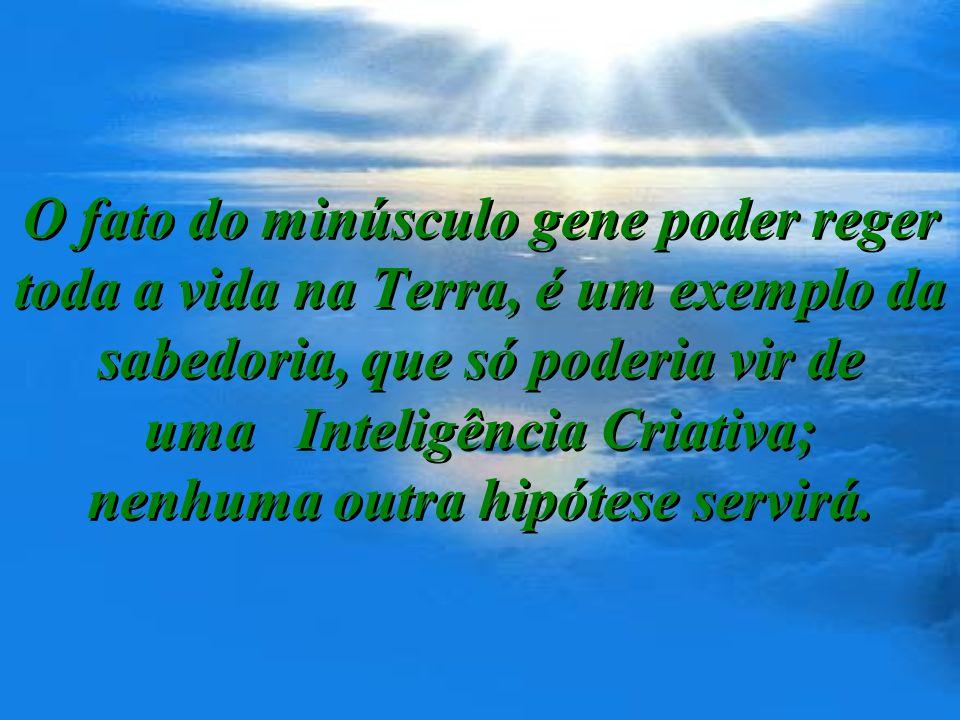 O fato do minúsculo gene poder reger toda a vida na Terra, é um exemplo da sabedoria, que só poderia vir de uma Inteligência Criativa; nenhuma outra hipótese servirá.