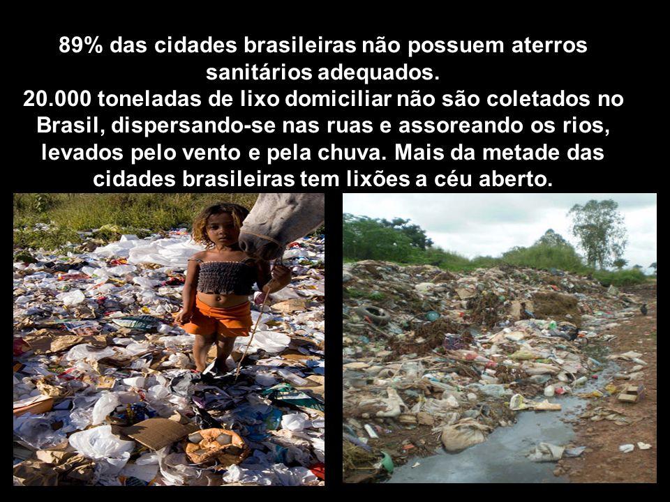 89% das cidades brasileiras não possuem aterros sanitários adequados.